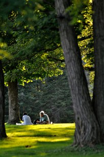 People enjoy a picnic on the lawn at Tanglewood in the evening sun. Photo: Caroline Bonniver Snyder.