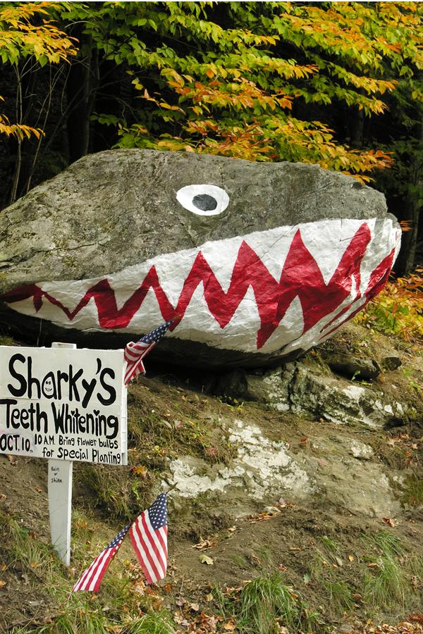 Shark Rock Lenox Rd 5798 Richmond MA Oct09Vx4X6w.jpg