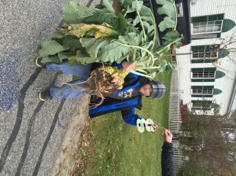 Braiden Pearson holds his prize-winning turnip, 2015. Photo courtesy of Friends of the Wardsboro Library.