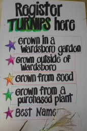 Turnip contest categories. Photo courtesy of Friends of the Wardsboro Library.
