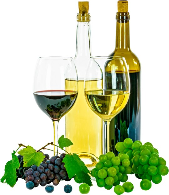 Featuring 70-plus wines complemented by specially prepared hors d'oeuvres by Robin Cavanaugh. Saturday Nov. 11, 2017, at the Bennington Elks Club, 125 Washington Ave., Bennington, Vt. Tickets: $20. Bennington Beverage Outlet 125 Northside Dr., Bennington, Vt. 802-442-4001 www.bennbev.com