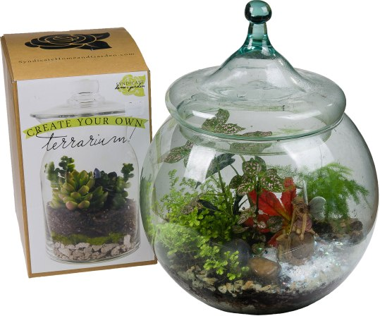 """Give a Green Garden – in a terrarium that is. This terrarium kit will get their green thumb off to a good start. Kit includes glass terrarium and cover, necessary soil layers, and decorative accents plus building and care instructions. Suitable small plants can be selected in addition from a wide variety of choices at Ward's. 2 Qt.: $34.99; 10"""": $69.99.Ward's Nursery, Garden Center & Christmas Shop600 Main St., Great Barrington, Mass.413-528-0166 wardsnursery.com"""