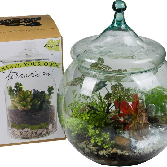 "Give a Green Garden – in a terrarium that is. This terrarium kit will get their green thumb off to a good start. Kit includes glass terrarium and cover, necessary soil layers, and decorative accents plus building and care instructions. Suitable small plants can be selected in addition from a wide variety of choices at Ward's. 2 Qt.: $34.99; 10"": $69.99.Ward's Nursery, Garden Center & Christmas Shop600 Main St., Great Barrington, Mass.413-528-0166 wardsnursery.com"