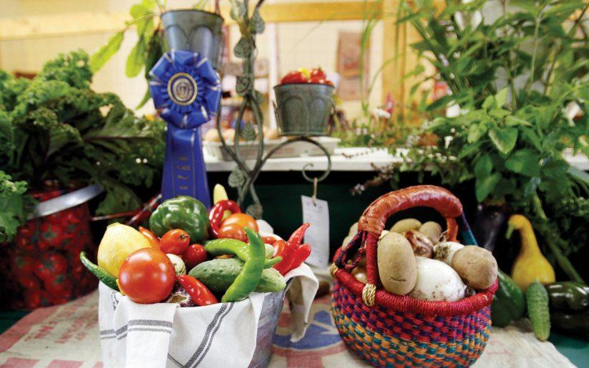 Cummington Fair vegetables