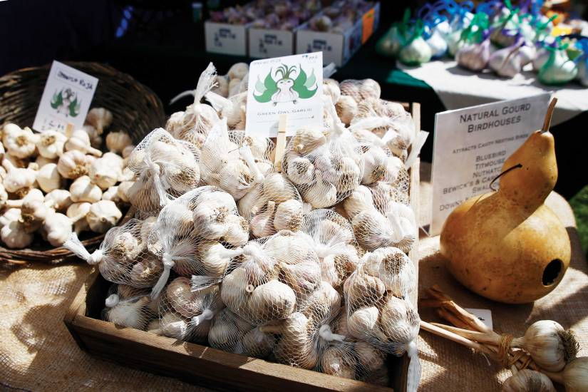 Garlic and Herb Festival